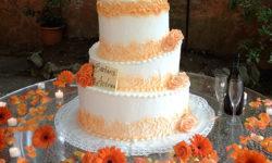 wedding-cake-orange