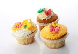 _dessert-cupcake