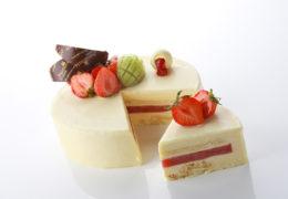 _torte-moderne-bianca1